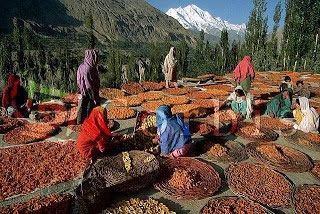 hunza_valle_articulo (3)