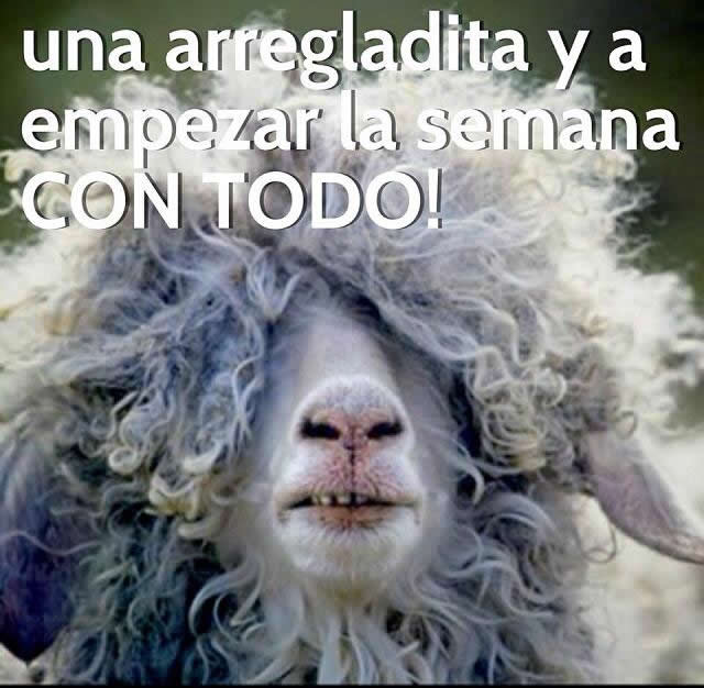 Marcianadas_148_oct0314 (110)