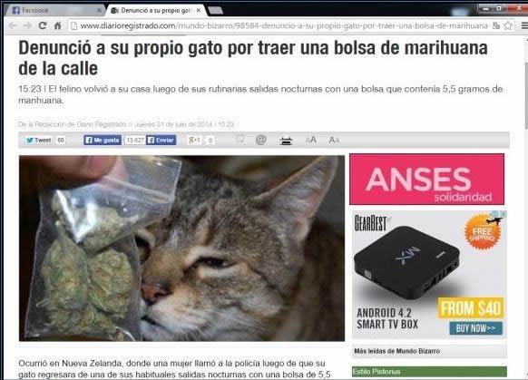 Marcianadas_148_oct0314 (246)