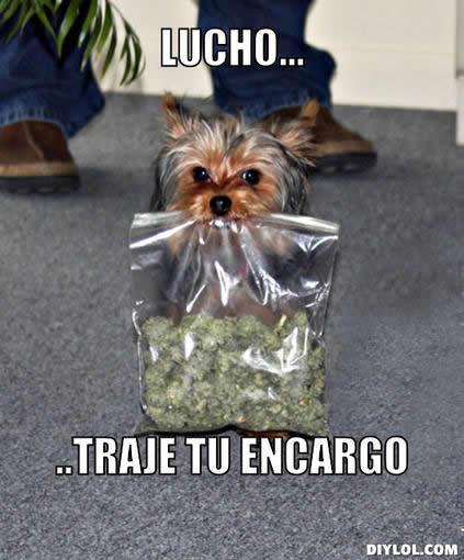 Marcianadas_148_oct0314 (267)