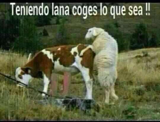 Marcianadas_148_oct0314 (65)