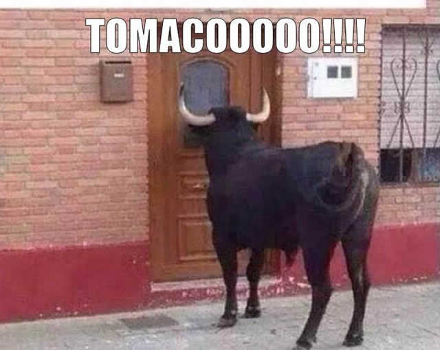 Marcianadas_149_101014oct (19)