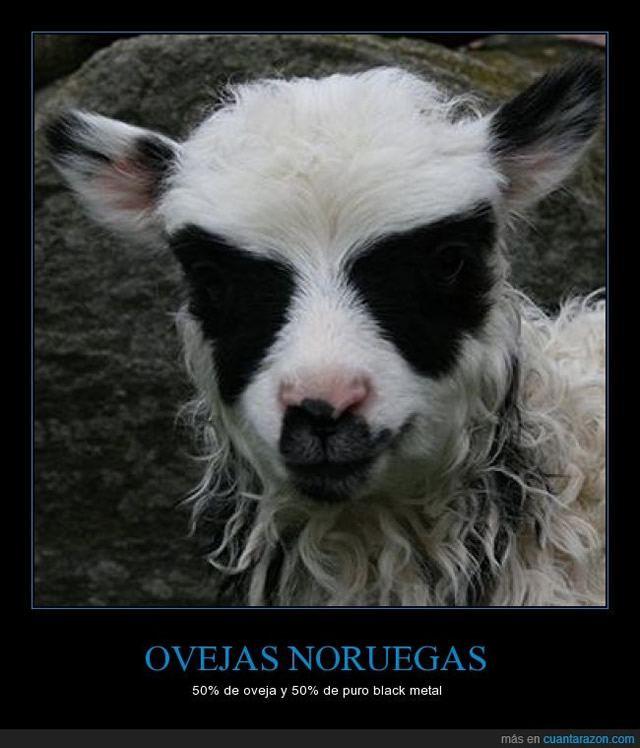 Marcianadas_150_1710141439 (67)