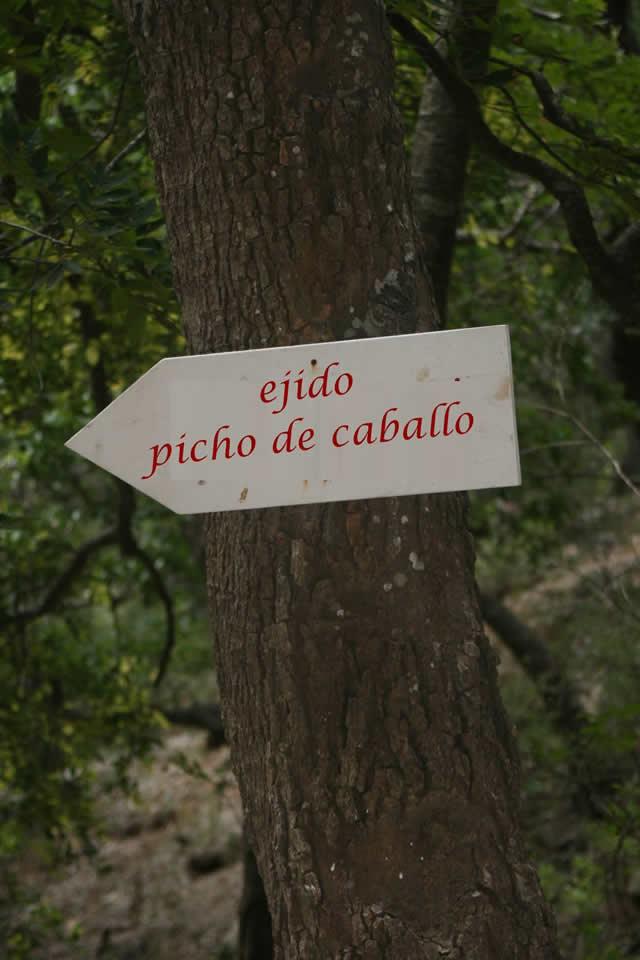 Marcianadas_152_31114 (229)