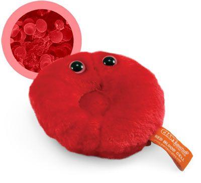 microbios_globulo-_rojo