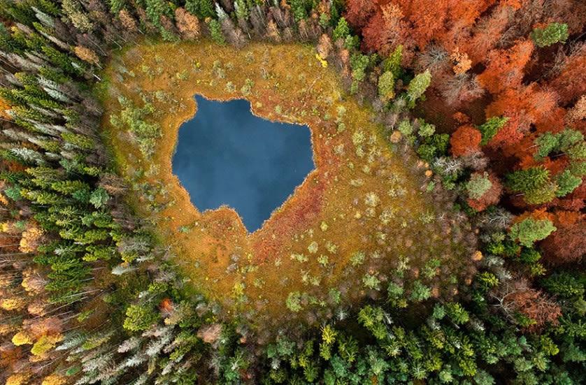 Fotografías del otoño antes y después (18)
