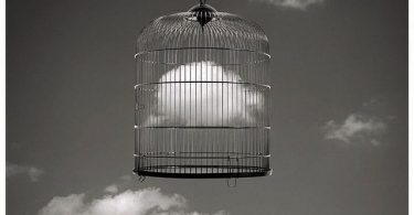 prision jaula