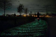 Ciclovía que brilla en la oscuridad, inspirada en la obra de Van Gogh, se inaugu...