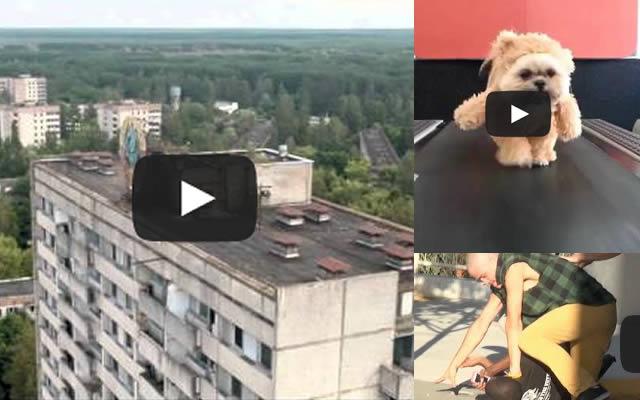 videos-4