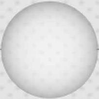 1-orina-transparente