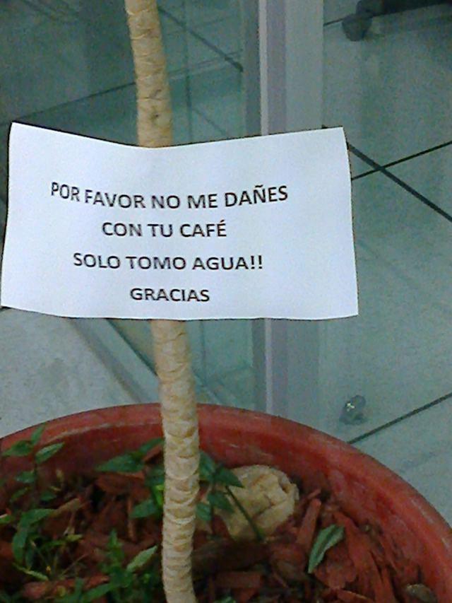 Marcianadas_158_121114 (103)