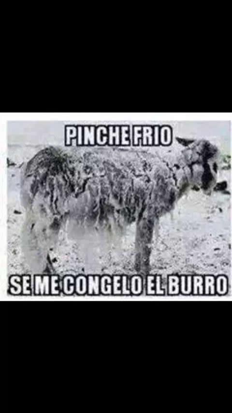 Marcianadas_158_121114 (45)