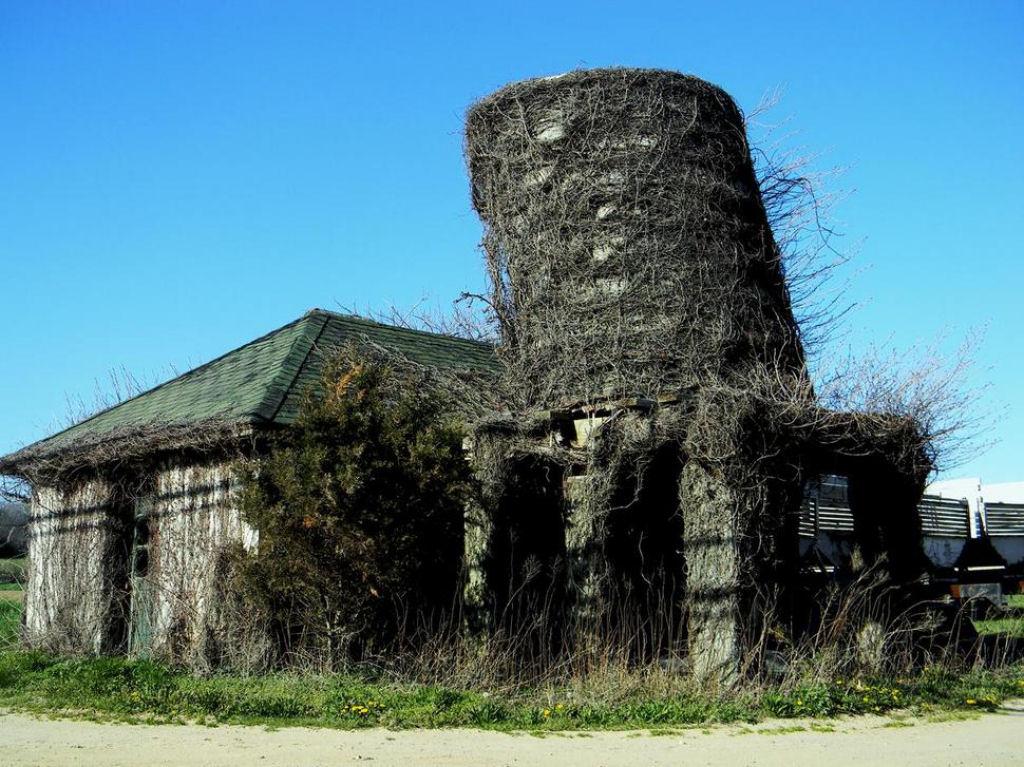 casa abandonadas alrededor del mundo (14)
