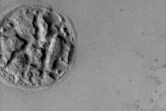 Conoce otro de los misterios de Marte que intriga a los astrónomos