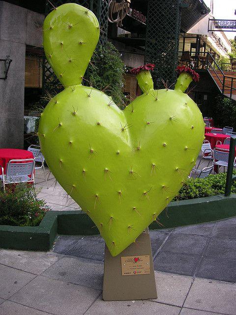 corazon cactus