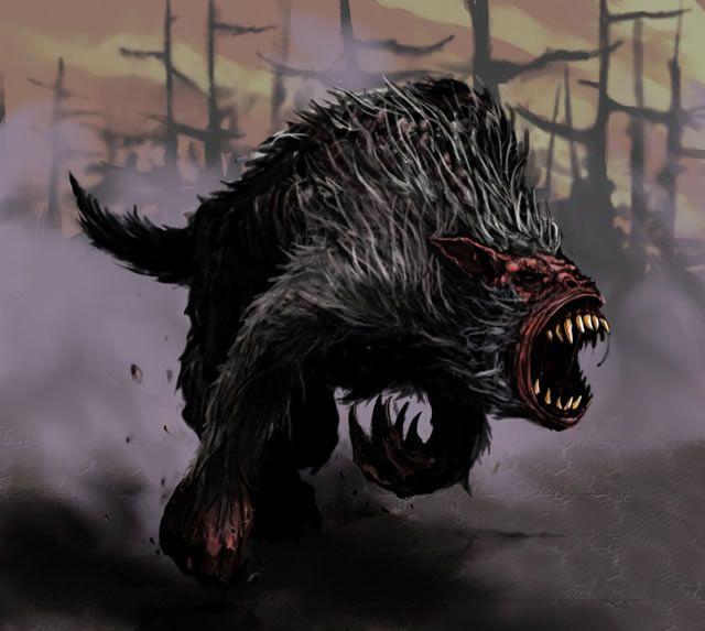 perros_negros_infernales (3)