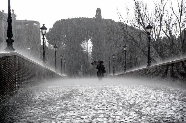 soledad_camino (2)