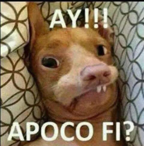 Marcianadas_164_3001141247 (151)