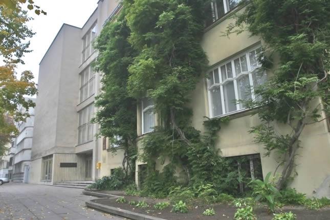 Museo diablo Lituania Kaunas (6)