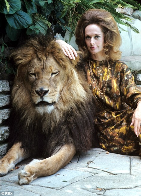 Roar leon Neil (3)