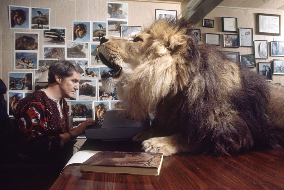 Roar leon Neil (4)