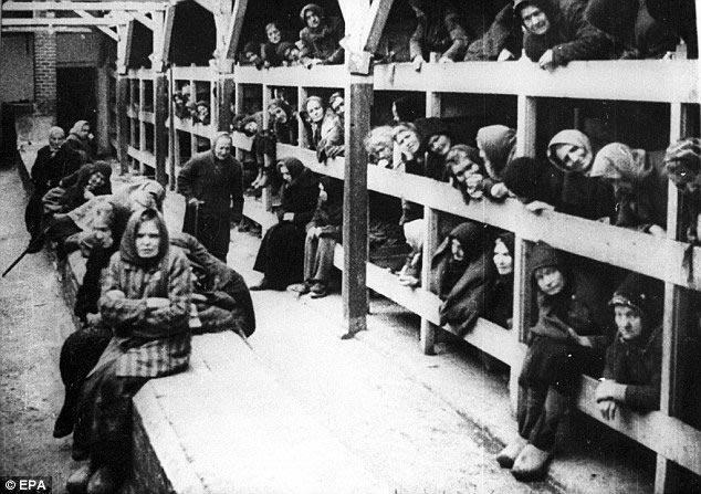 campo concentracion litera