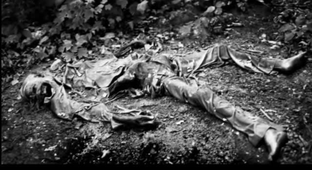 cuerpo descomposición