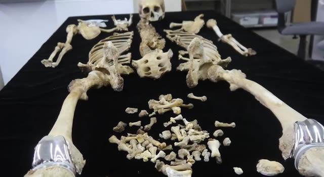 huesos coleccion 2