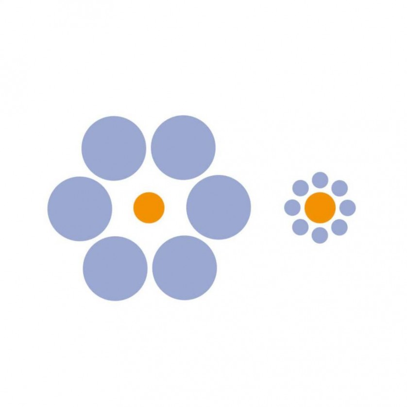 ilusion optica (3)