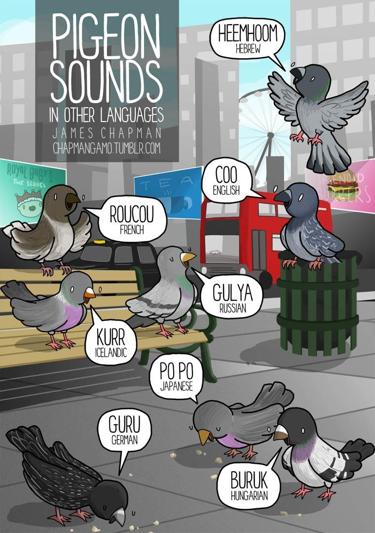 sonidos traducciones James Chapman (10)
