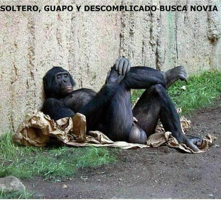 Marcianadas_165_0502151153 (156)