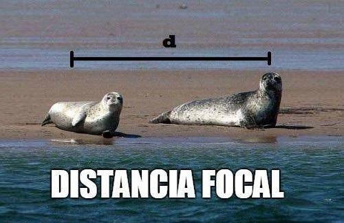Marcianadas_165_0502151153 (46)