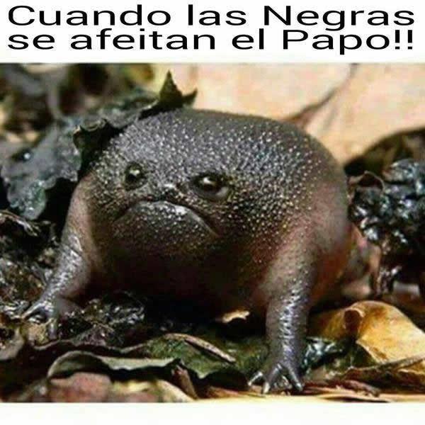 Marcianadas_165_0502151153 (63)
