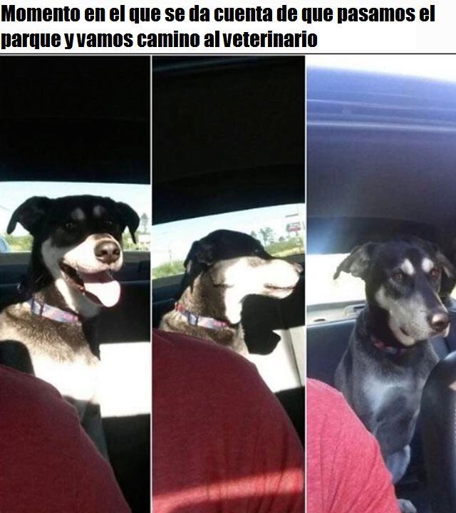 Marcianadas_166_1036130215 (150)