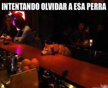 Marcianadas_166_1036130215 (207)