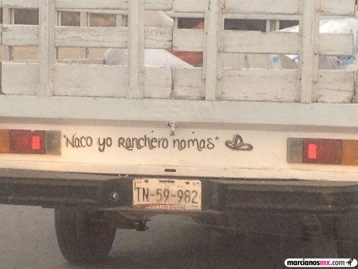 Marcianadas_168_0207151244 (150)