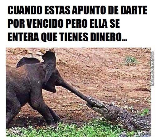 Marcianadas_168_0207151244 (163)