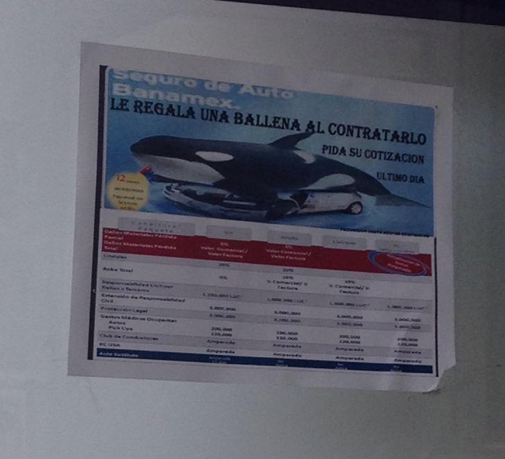 Marcianadas_16906mar15 (51)