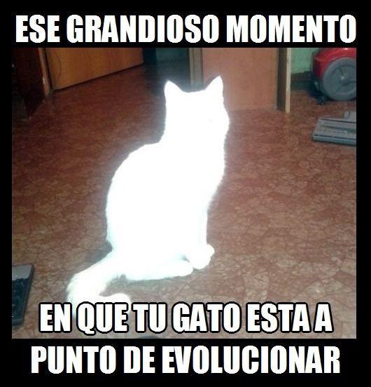 Marcianadas_171_20150320 (57)