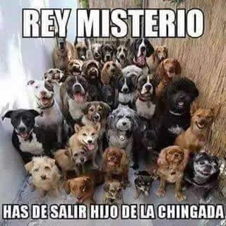 Marcianadas_172_1503271222 (169)