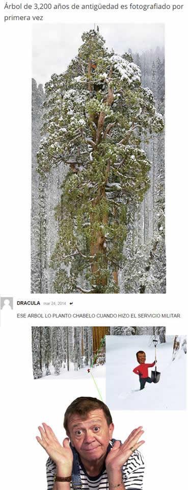 Marcianadas_172_1503271222 (179)