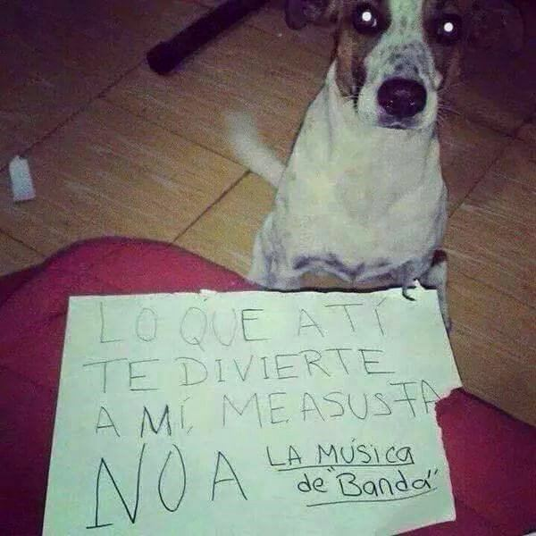 Marcianadas_172_1503271222 (244)