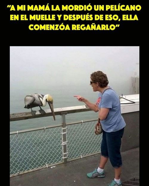 Marcianadas_172_1503271222 (68)
