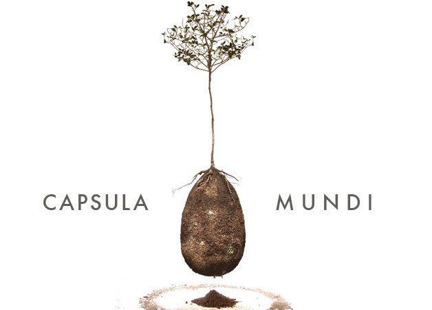 capsula mundi (6)
