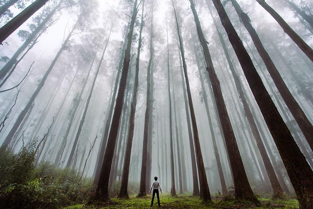 Fotos insignificancia del hombre ante la naturaleza 02