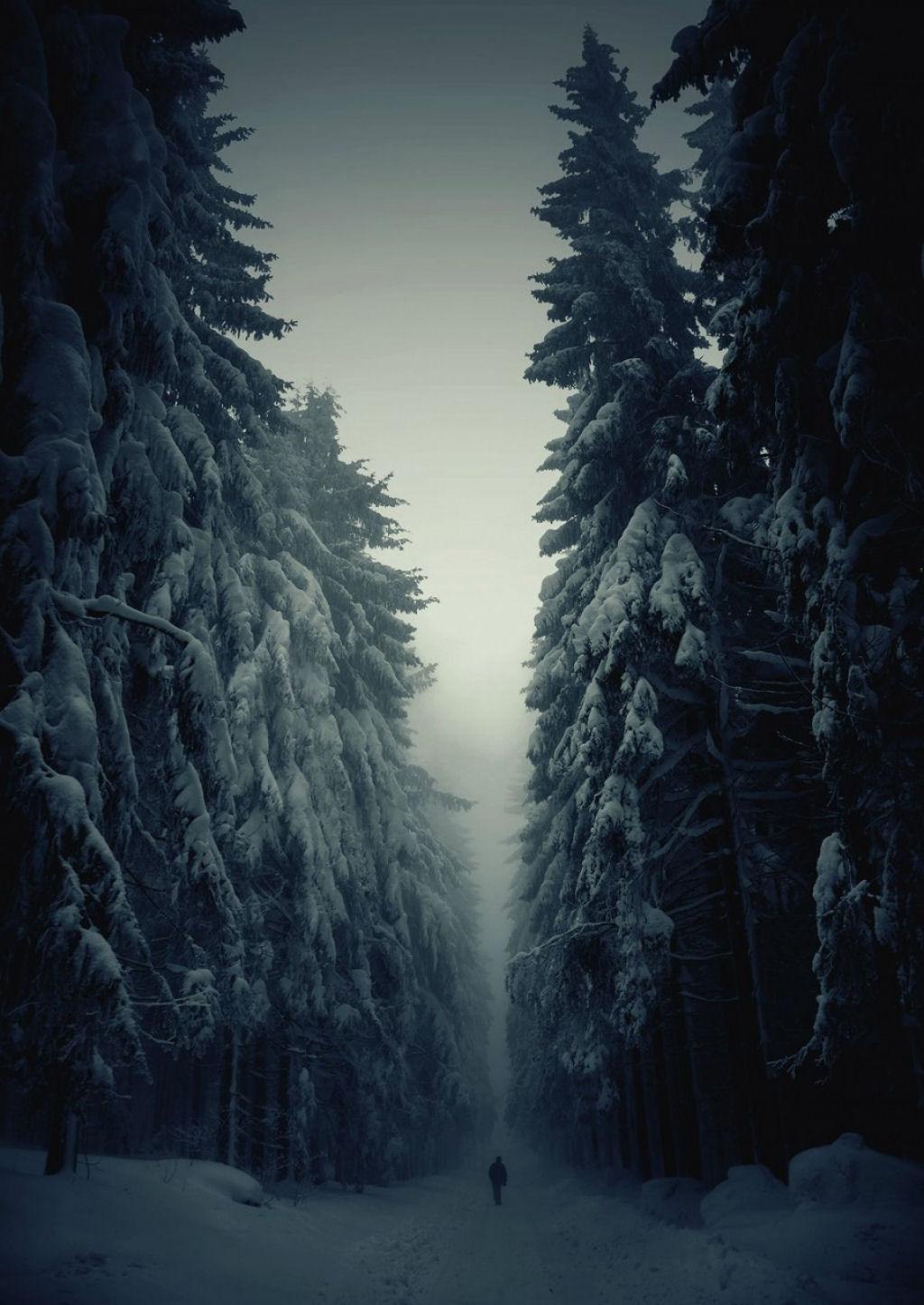 Fotos insignificancia del hombre ante la naturaleza 14