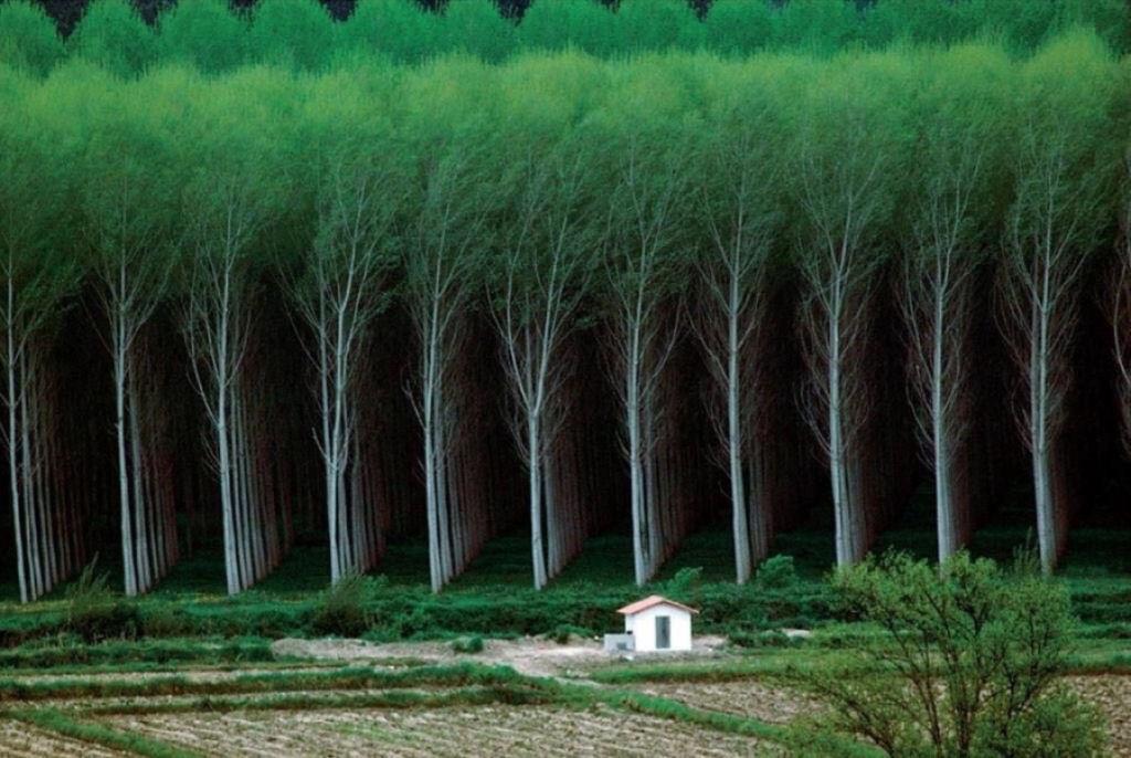 Fotos insignificancia del hombre ante la naturaleza 24