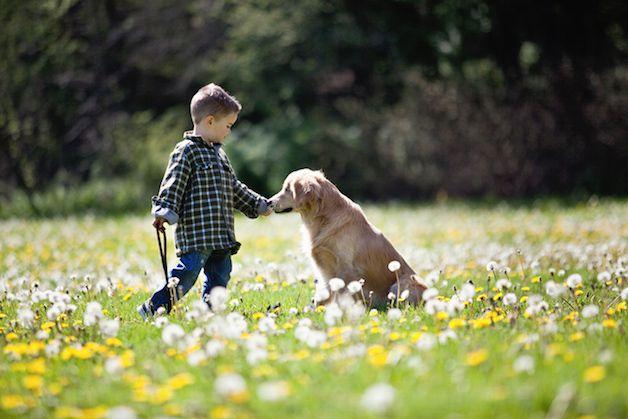 smiley perro ciego (4)