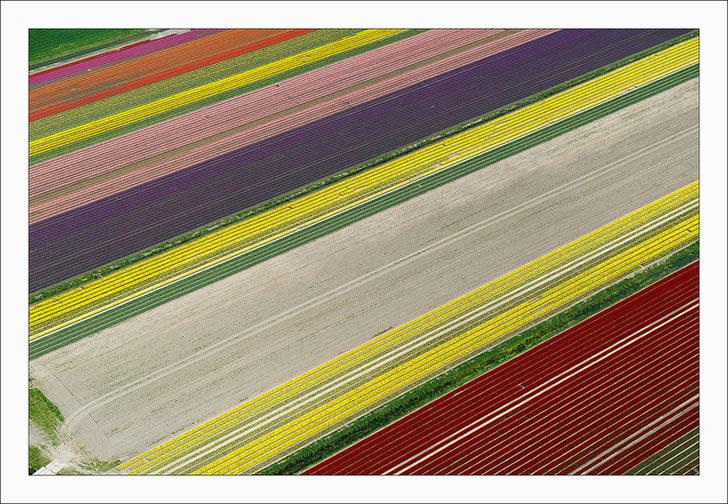 Campos tupilanes Holanda (10)