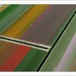 Estas líneas geométricas multicolores no son lo que crees